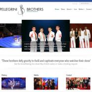 pellegrinibrothers.com website relaunch!
